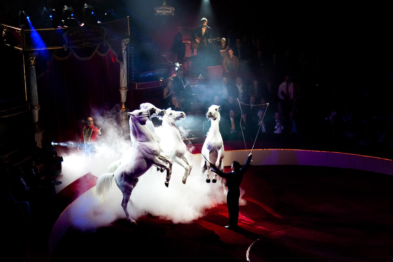 Gala de l'Union 2010 - Cirque Bouglione